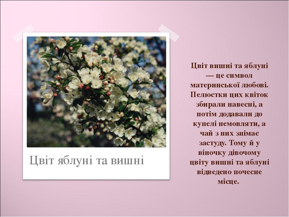 Цвіт вишні та яблуні — це символ материнської любові. Пелюстки цих квіток зби...