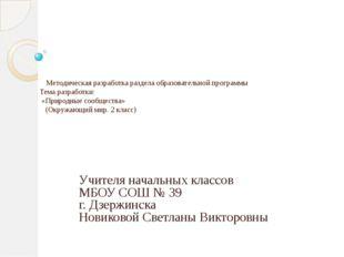 Методическая разработка раздела образовательной программы Тема разработки: «