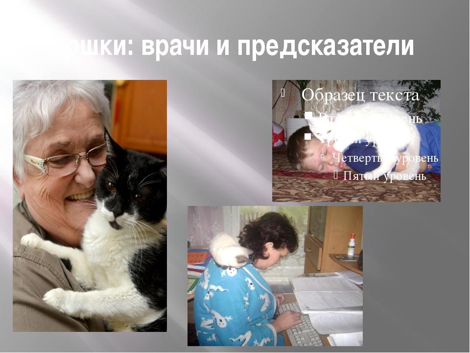 Кошки: врачи и предсказатели