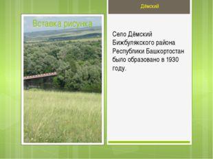 Село Дёмский Бижбулякского района Республики Башкортостан было образовано в 1