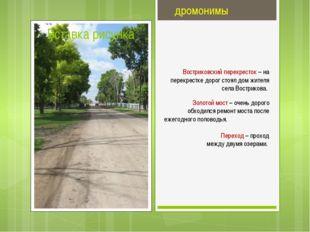 дромонимы Востриковский перекресток – на перекрестке дорог стоял дом жителя