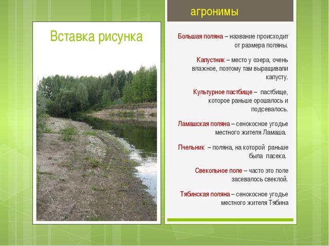 агронимы Большая поляна – название происходит от размера поляны. Капустник –...