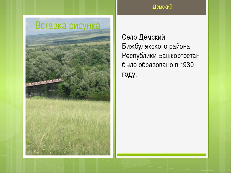 Село Дёмский Бижбулякского района Республики Башкортостан было образовано в 1...