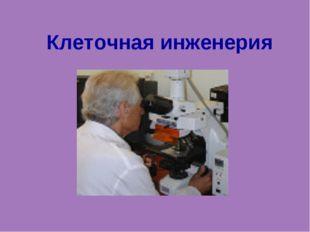 Клеточная инженерия