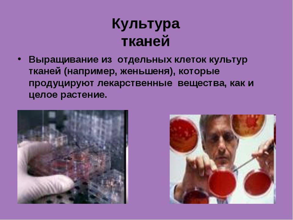 Культура тканей Выращивание из отдельных клеток культур тканей (например, жен...