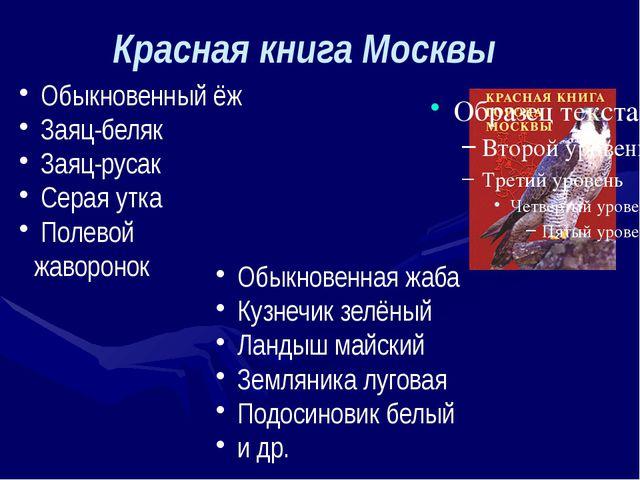 Красная книга Москвы Обыкновенный ёж Заяц-беляк Заяц-русак Серая утка Полевой...