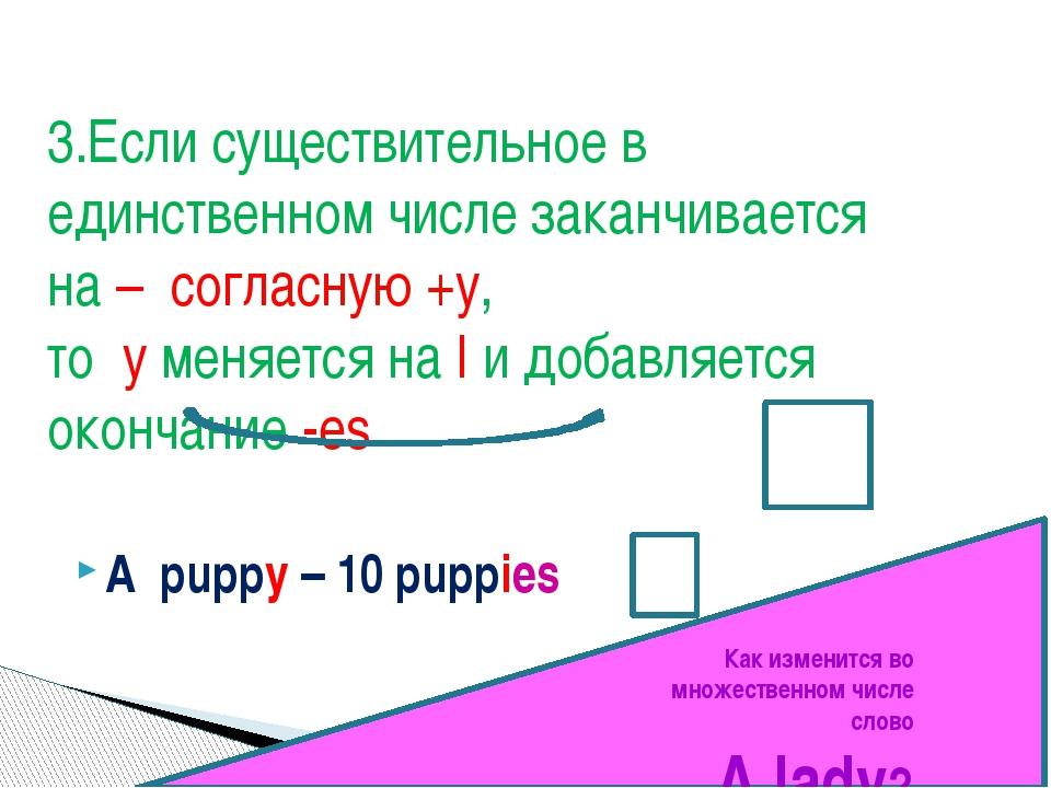A puppy – 10 puppies 3.Если существительное в единственном числе заканчиваетс...