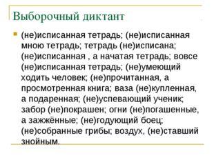 Выборочный диктант (не)исписанная тетрадь; (не)исписанная мною тетрадь; тетра