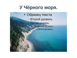 У Чёрного моря.