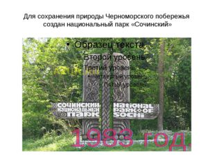 Для сохранения природы Черноморского побережья создан национальный парк «Сочи