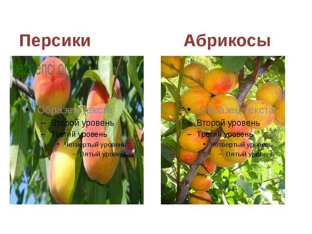 Персики Абрикосы