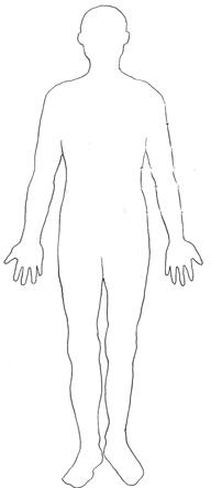 C:\Users\Vento\Desktop\мультимедиа урок\ОМ\НОВОЕ\human-body-diagram-heart-lungs-intestine-designation.jpg