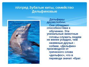 п/отряд Зубатые киты, семейство Дельфиновые Дельфины дружелюбны. Они обладают