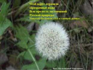 Чтоб вдруг отразили Прозрачные воды Всю прелесть застенчивой Русской природы.