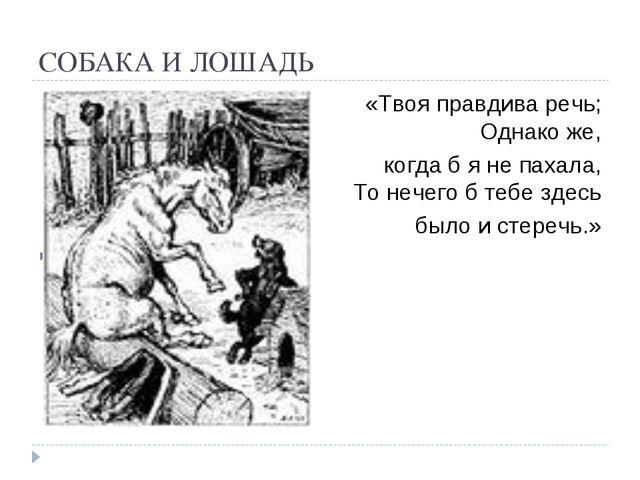 СОБАКА И ЛОШАДЬ «Твоя правдива речь; Однако же, когда б я не пахала, То нечег...