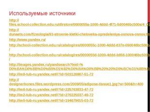 Используемые источники http://files.school-collection.edu.ru/dlrstore/0000055
