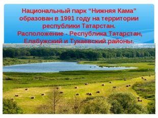 """Национальный парк """"Нижняя Кама"""" образован в 1991 году на территории республик"""
