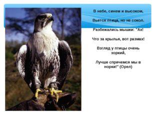 """В небе, синем и высоком, Вьется птица, но не сокол. Разбежались мышки: """"Ах! Ч"""