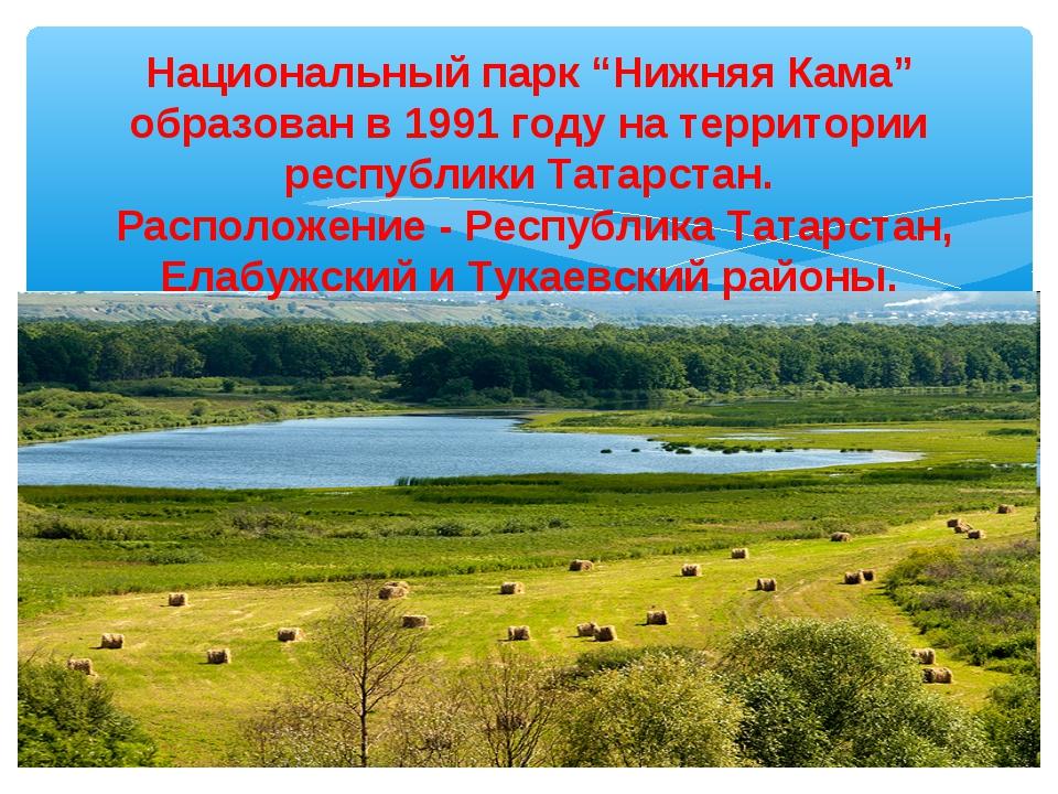 """Национальный парк """"Нижняя Кама"""" образован в 1991 году на территории республик..."""
