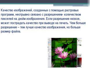 Качество изображений, созданных с помощью растровых программ, неотрывно связа