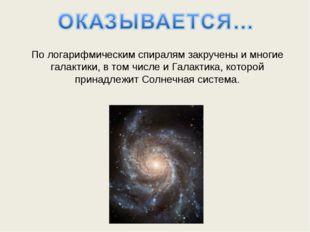 По логарифмическим спиралям закручены и многие галактики, в том числе и Галак