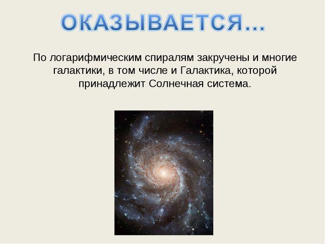По логарифмическим спиралям закручены и многие галактики, в том числе и Галак...