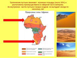 Тропические пустыни занимают огромную площадь (около 30%) и расположены преим