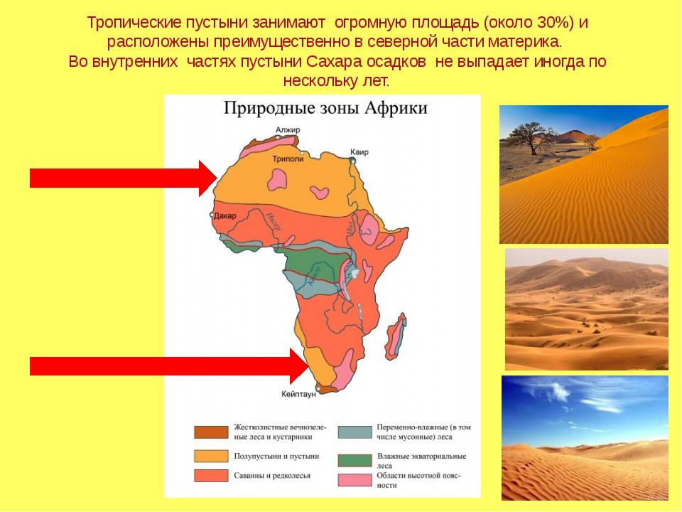 Тропические пустыни занимают огромную площадь (около 30%) и расположены преим...
