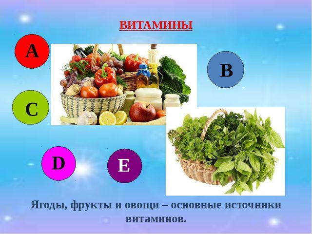 ВИТАМИНЫ Ягоды, фрукты и овощи – основные источники витаминов. А С D В Е