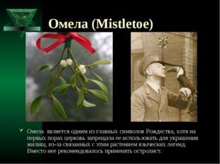 Омела (Mistletoe) Омела является одним из главных символов Рождества, хотя на