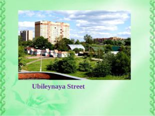 Ubileynaya Street