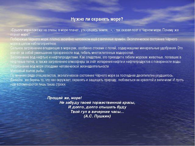 Нужно ли охранять море?  «Брызги моря похожи на слезы, в море плачет , уткну...