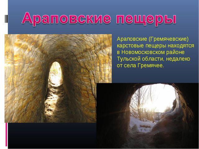 Араповские (Гремячевские) карстовые пещеры находятся в Новомосковском районе...