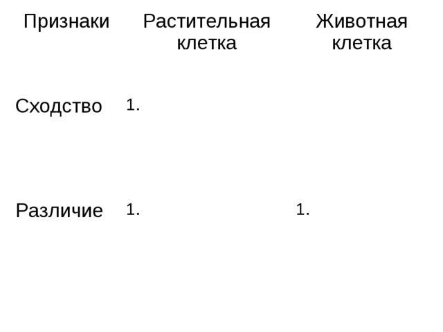 ПризнакиРастительная клеткаЖивотная клетка Сходство1. Различие1.1.