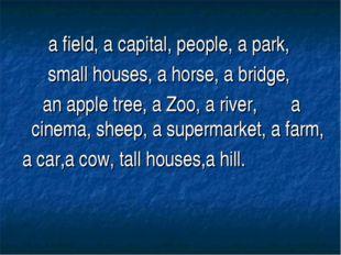 a field, a capital, people, a park, small houses, a horse, a bridge, an apple