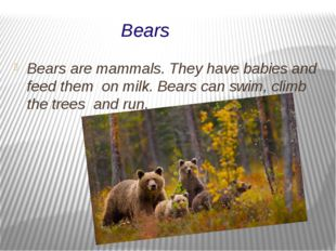Bears Bears are mammals. They have babies and feed them on milk. Bears can sw