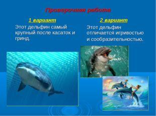Проверочная работа 1 вариант Этот дельфин самый крупный после касаток и гринд