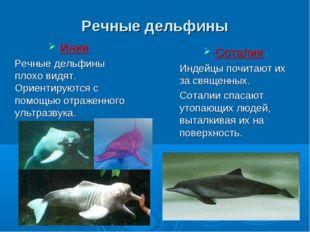 Речные дельфины Инии Речные дельфины плохо видят. Ориентируются с помощью отр