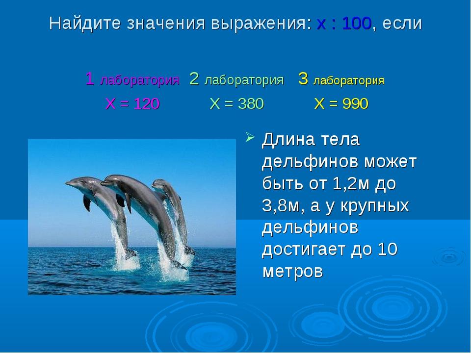 Найдите значения выражения: х : 100, если Длина тела дельфинов может быть от...