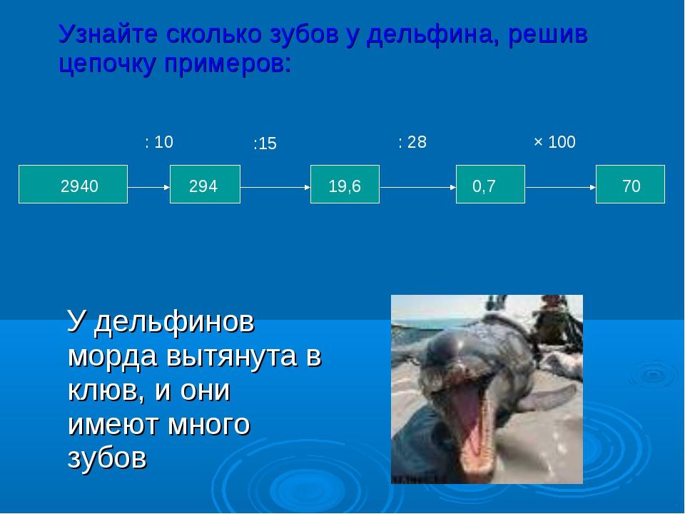 У дельфинов морда вытянута в клюв, и они имеют много зубов : 10 : 28 × 100 7...