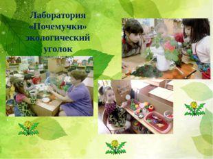 Лаборатория «Почемучки» экологический уголок