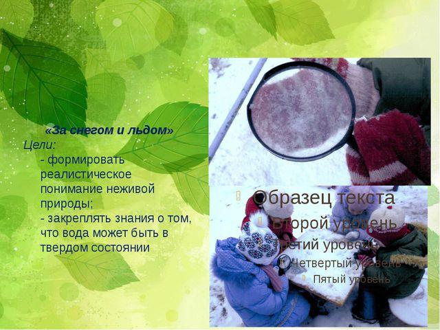 «За снегом и льдом» Цели: - формировать реалистическое понимание неживой прир...