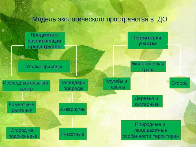 Модель экологического пространства в ДО Предметно- развивающая среда группы Т...