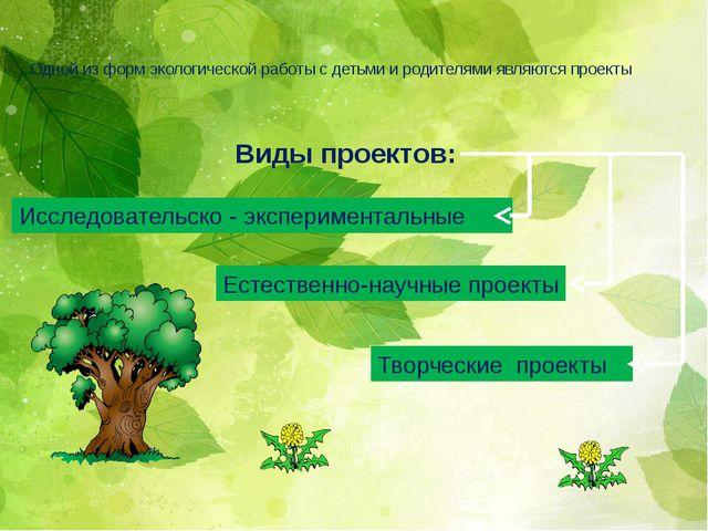 Одной из форм экологической работы с детьми и родителями являются проекты Исс...