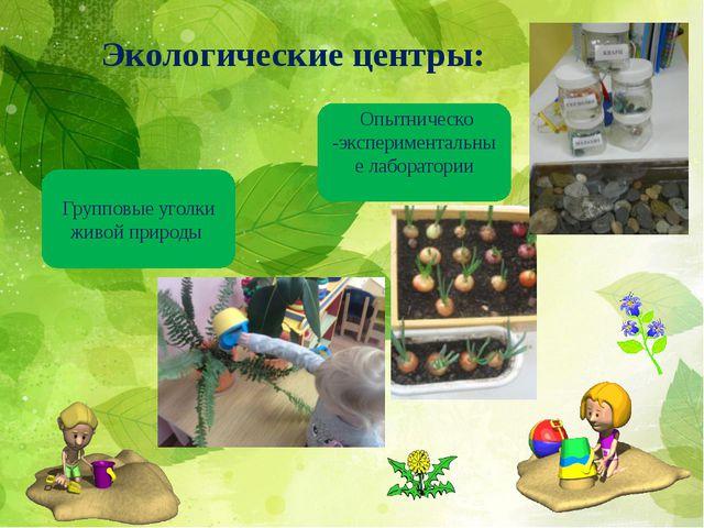 Экологические центры: Групповые уголки живой природы Опытническо -эксперимент...