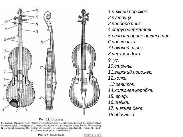 http://ppt4web.ru/images/242/13616/640/img2.jpg