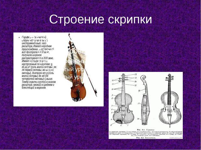 Строение скрипки