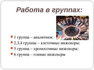 Работа в группах: 1 группа – аналитики; 2,3,4 группы – клеточные инженеры; 5