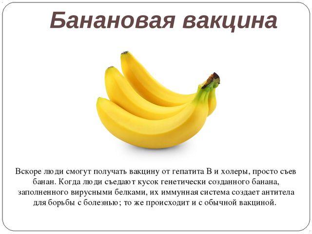 Банановая вакцина Вскоре люди смогут получать вакцину от гепатита B и холеры,...