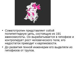 Соматотропин представляет собой полипептидную цепь, состоящую из 191 аминокис